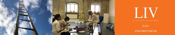 Meditationsworkshop in till materialisering